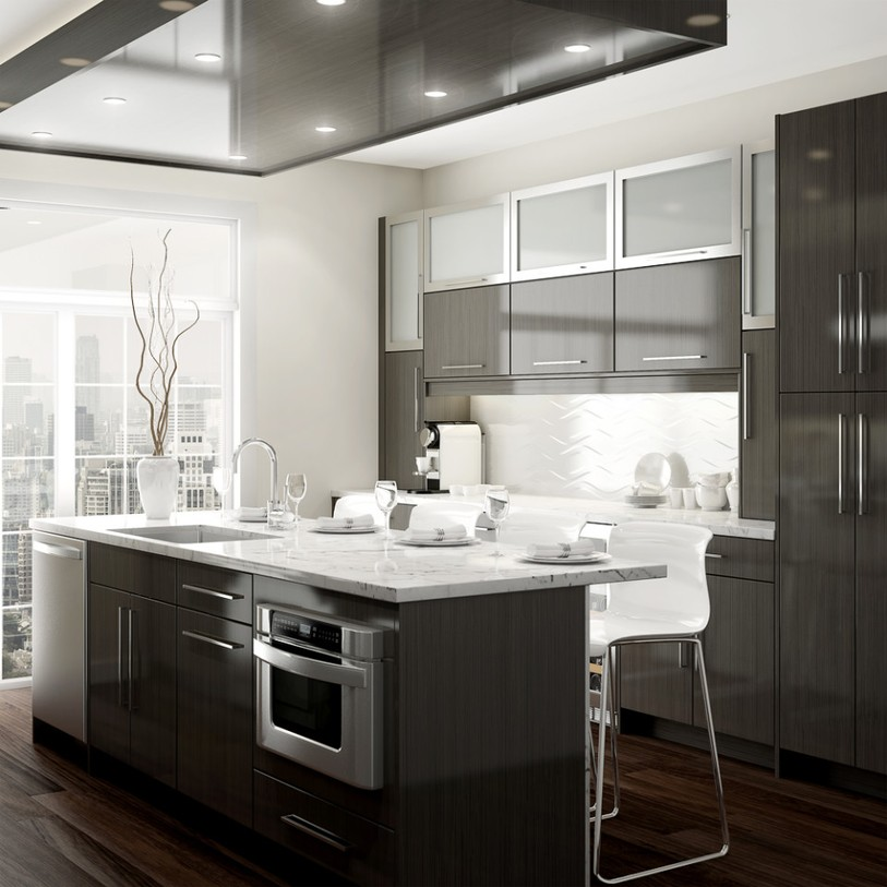 Contemporary Kitchen Remodeling Ideas - Bathroom and Kitchen ...